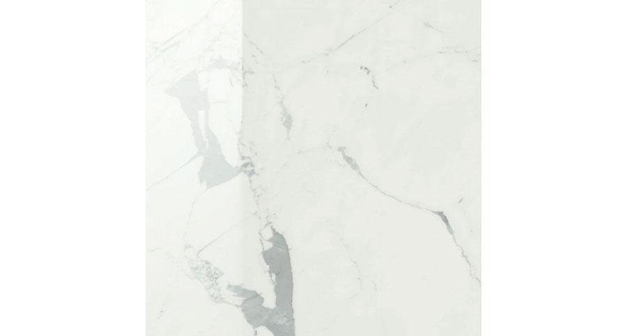 ANIMA STATUARIO VENATO 120x120