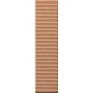BISCUIT Strip Terra 5x20