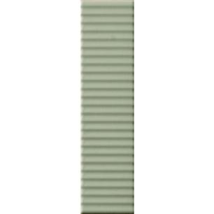 BISCUIT Strip Salvia 5x20