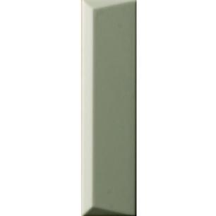 BISCUIT Peak Salvia 5x20