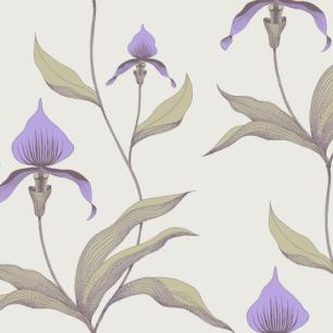 Tapeta Orchid