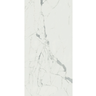 ANIMA STATUARIO VENATO 119,5 x 239 CM